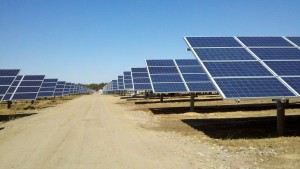 Area_1_Access_Road_and_Photovoltaic_Arrays