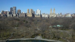 View of Central Park From East Side